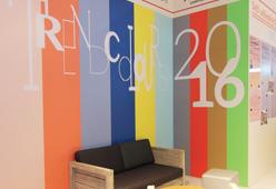Wallstick pellicola per decorazione murale.jpg